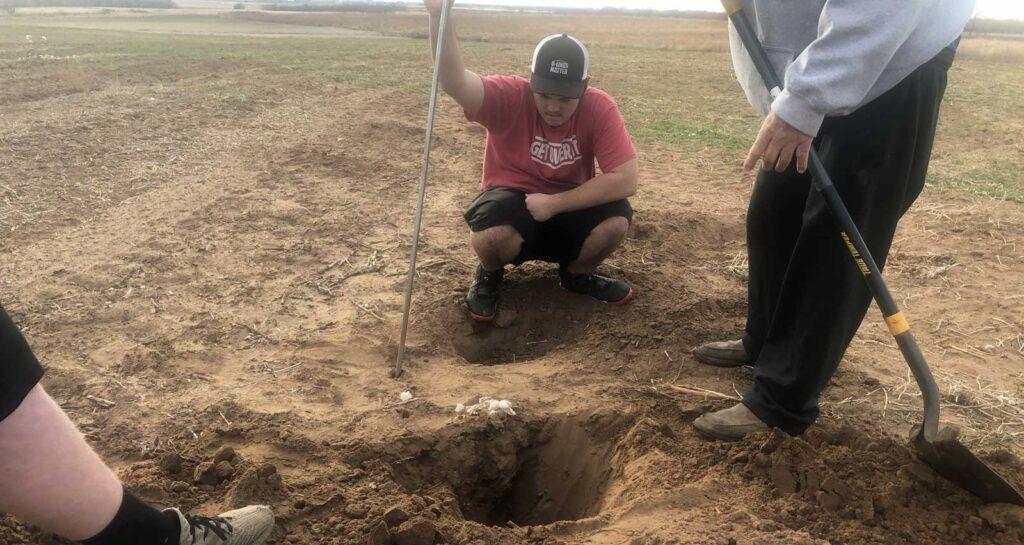 Badger Dig
